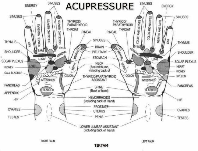 Diy Acupressure furthermore Pictogram Of Backache 34973594 moreover 402579654164443923 likewise Man Dan Yang Acupuncture 12 Miraculous Points Part 6 likewise Gluteal Weakness. on acupuncture for pain